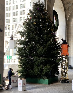 Erecting Pittsburgh 's 105th Christmas Tree